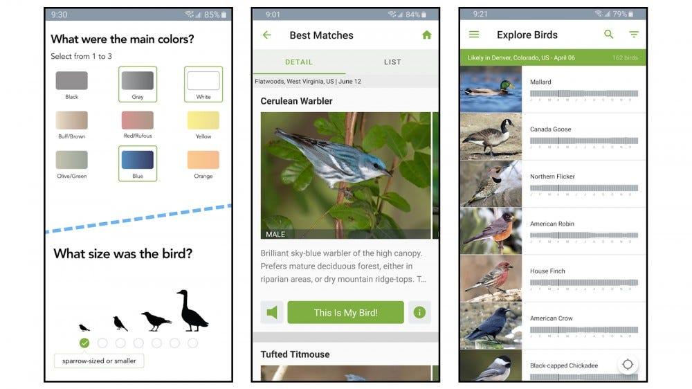 Merlin Bird ID app screenshots