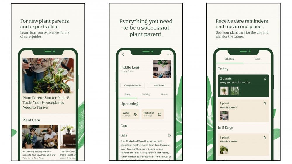 Vera app for experienced plant owners