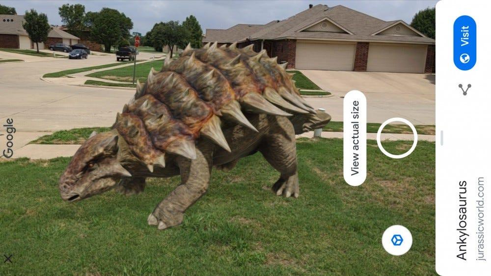 An ankylosaurus in Google AR.