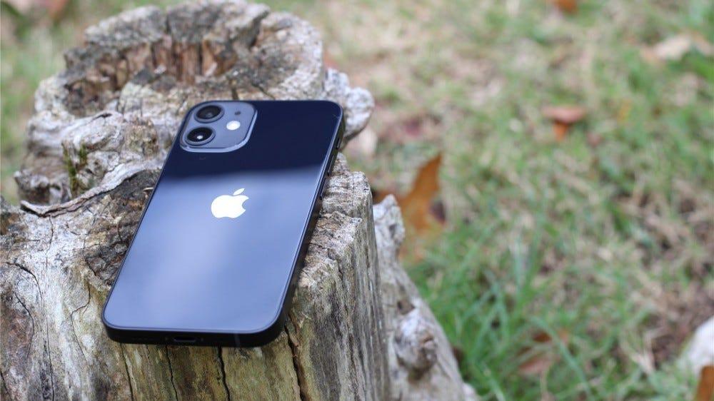 The black iPhone 12 mini lying face down on a tree stump
