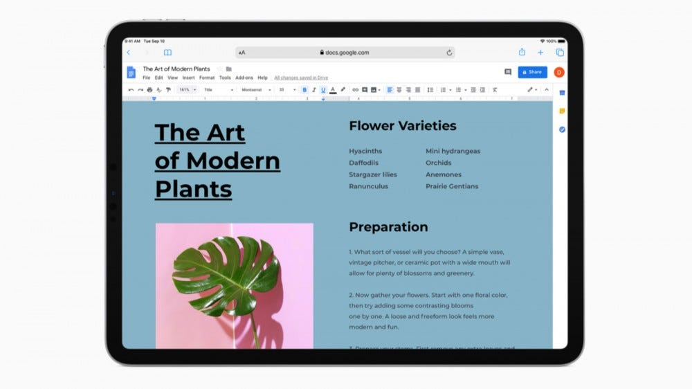 Safari on iPad