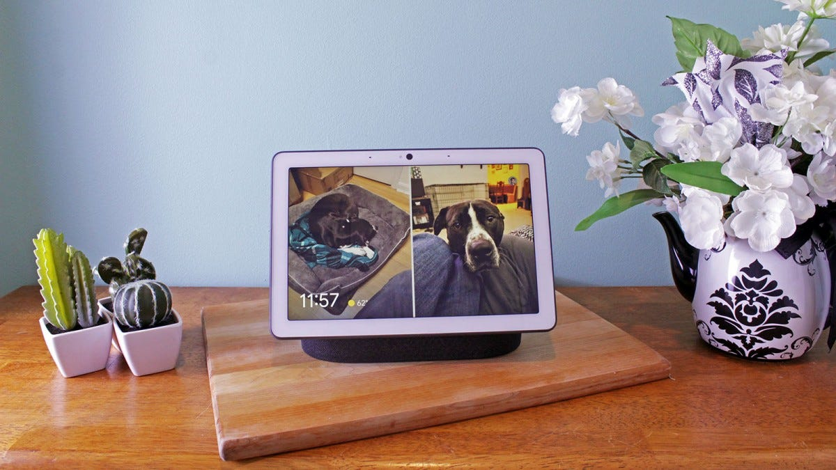A Nest Hub on a living room end table, showing pictures of dogs.