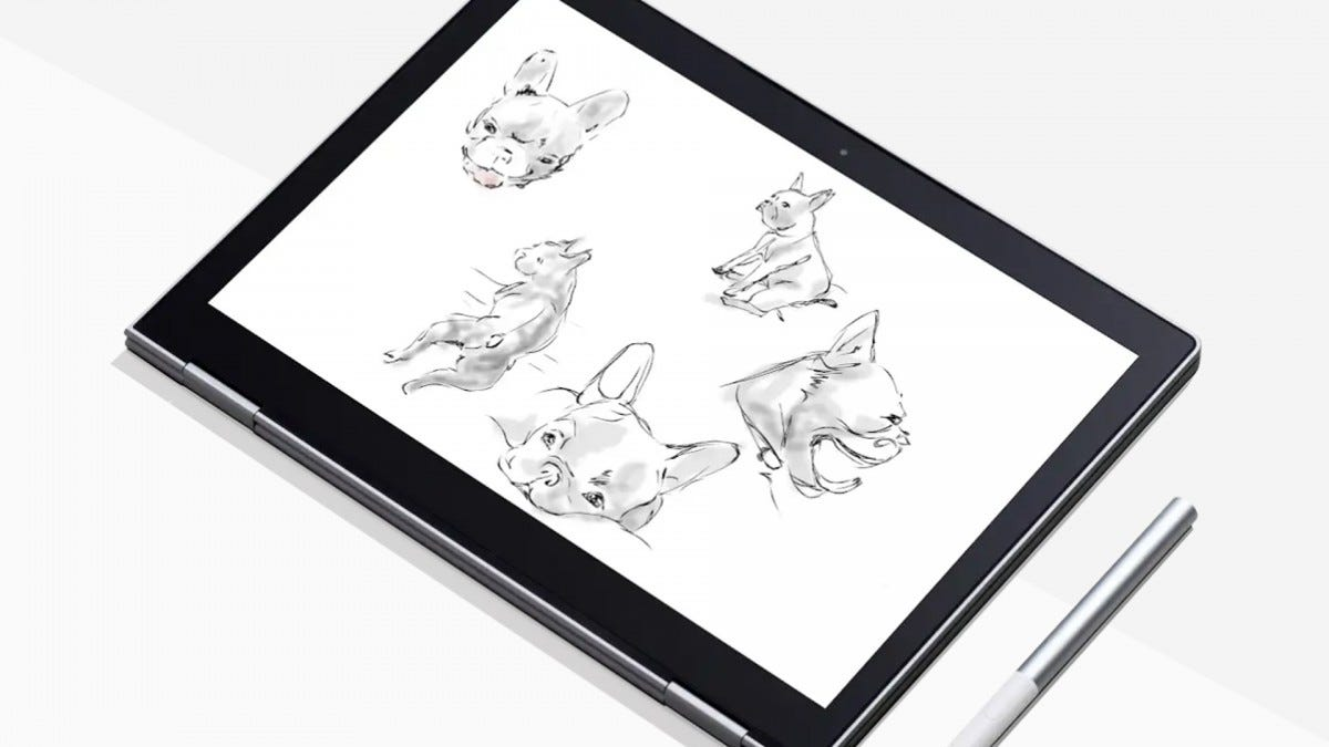 Sketches of a dog on a Google Pixelbook.
