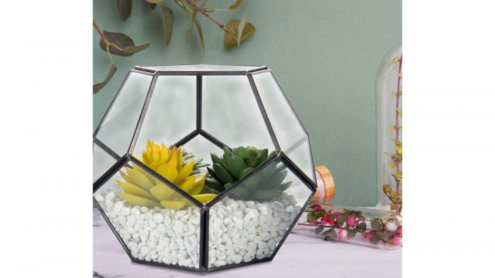 Geometric glass and metal terrarium with succulents and rocks sitting on a desktop with other plants