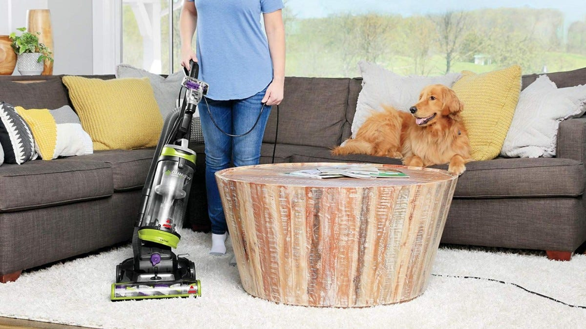 Man cleans carpet with Bissell ProHeat 2X Revolution Pet Pro while a dog sits on the couch behind him