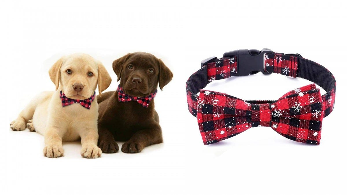 The Freezx Bow Tie Christmas Collar