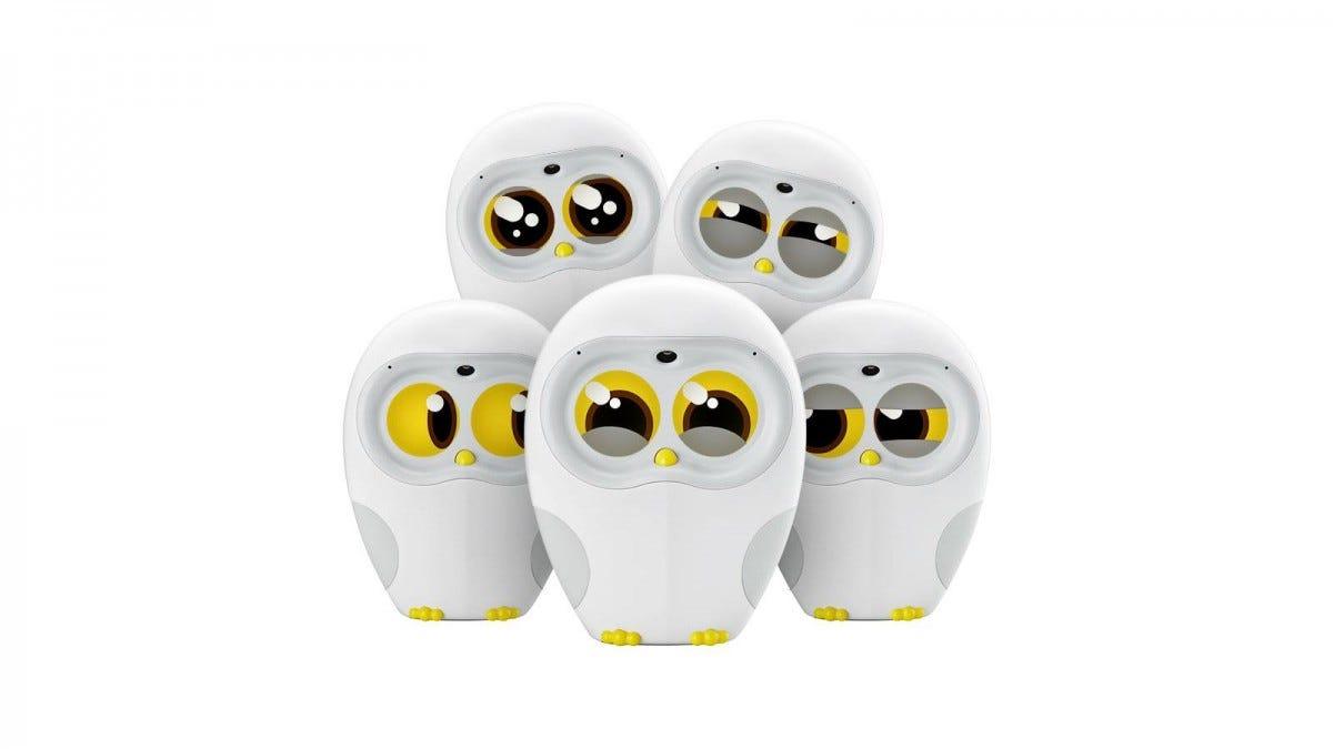 Five Luka owl robots.