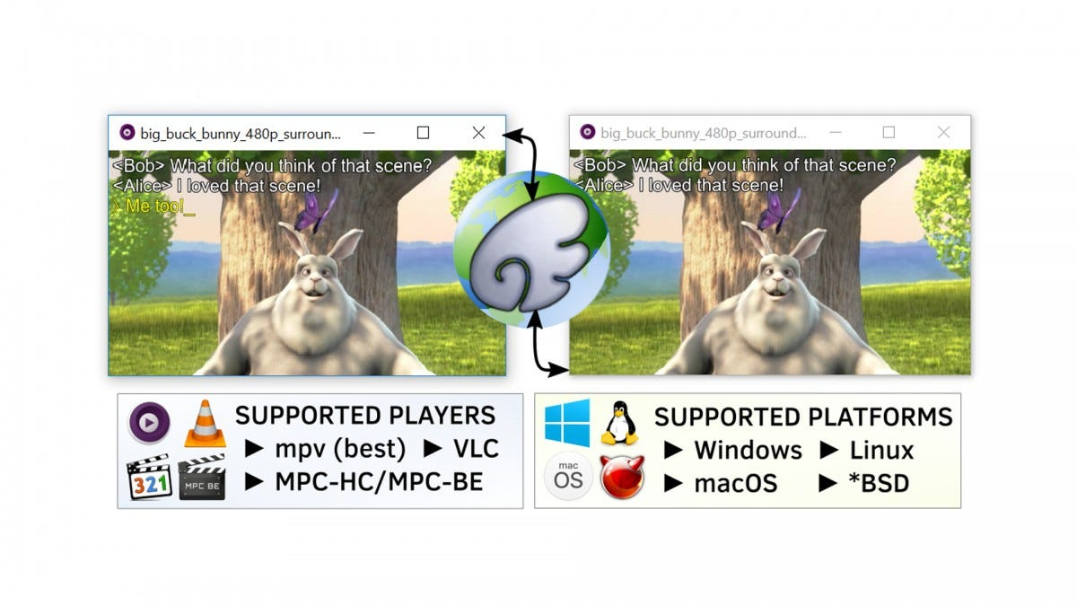 A screenshot of the SyncPlay app.