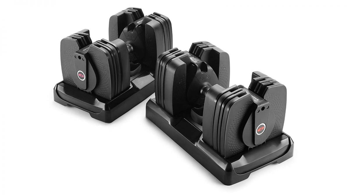 The Bowflex SelectTech 560 Dumbbells.