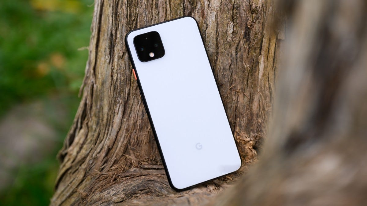 Google Pixel 4 in Tree