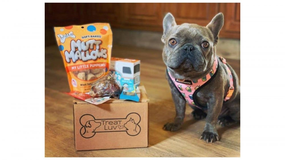 TreatLuv best subscription box for dog treats