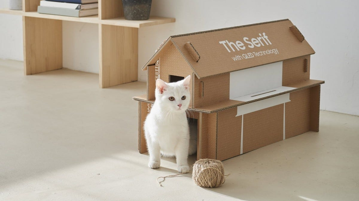 A cat sitting in front of a cardboard cat house.
