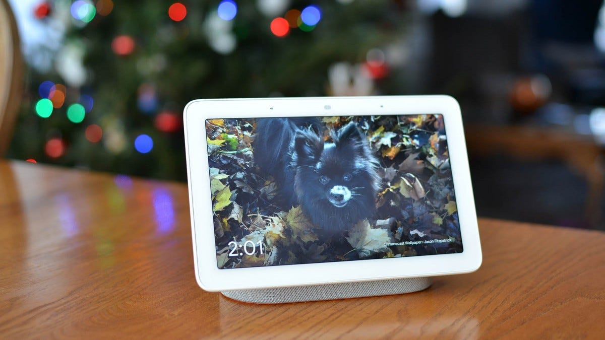 Picture of a Pomeranian dog on a Google Home Hub