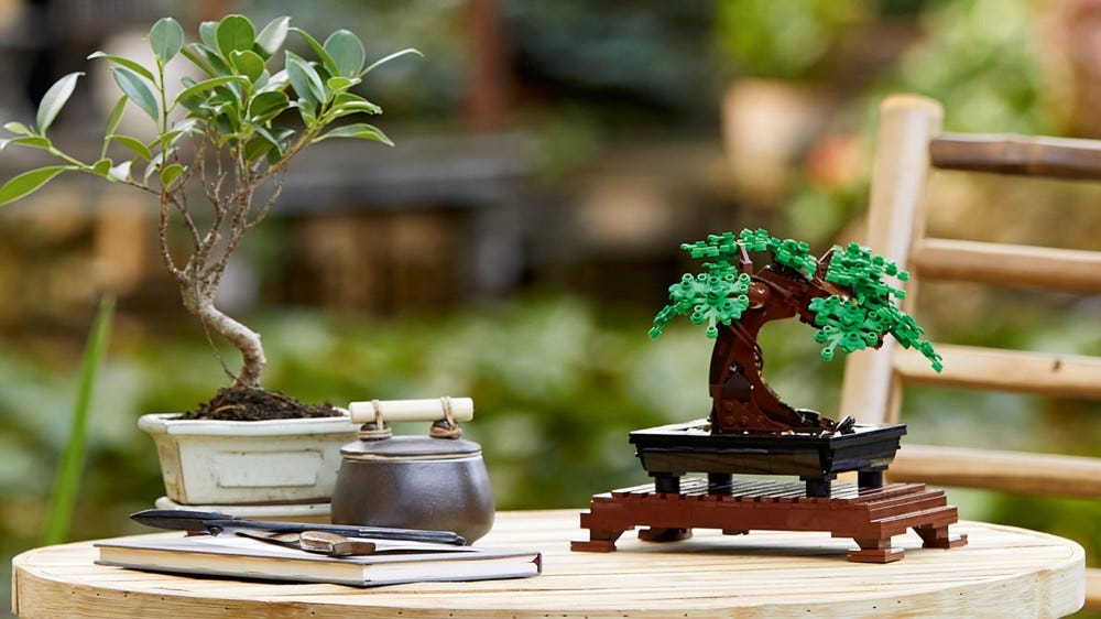 A LEGO bonsai tree next to a real bonsai tree.