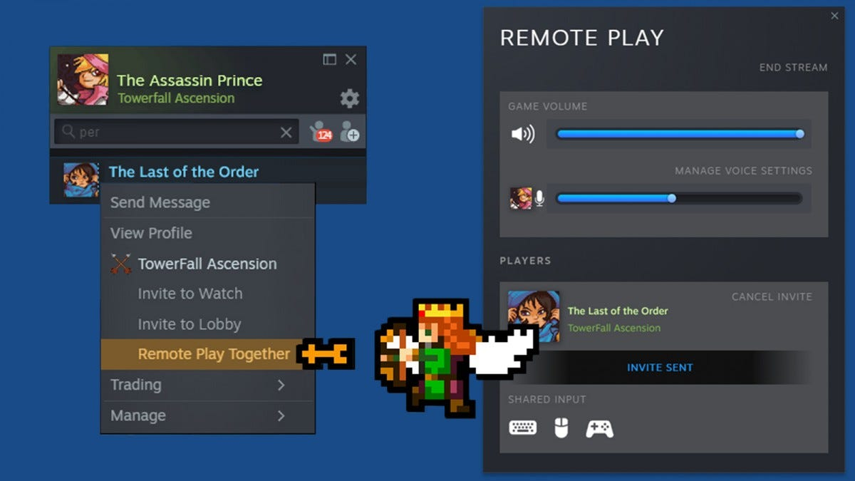 Steam Remote Play Together In-Action