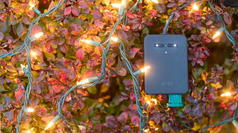 An outdoor plug powering Christmas Lights in a bush.