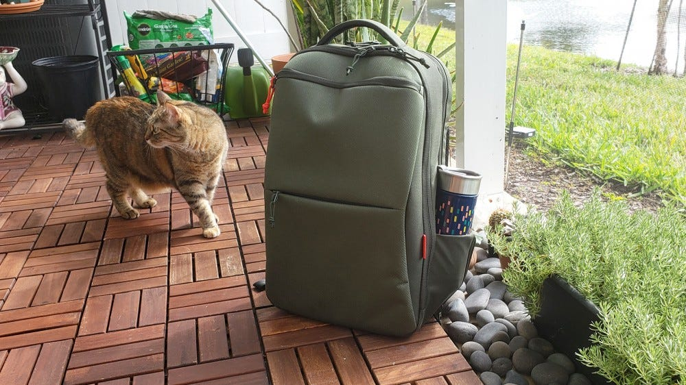 A photo of the Eco Pro bag and my cat.