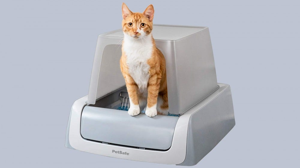 Cat leaves PetSafe self-cleaning litter box