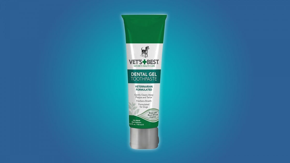The Best Dog Toothpastes to Fix Your Dog's Bad Breath – Review Geek