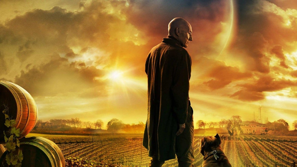 Jean-Luc Picard standing next to a dog on a vinyard.