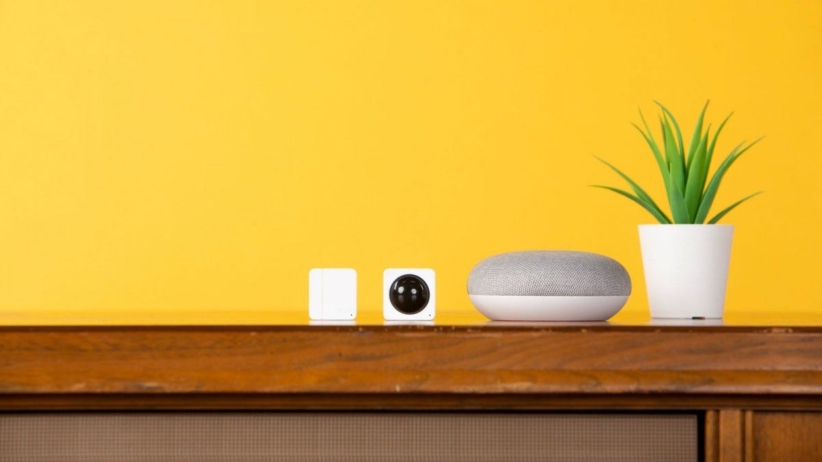 New Wyze sensors displayed next to a Google Home Mini