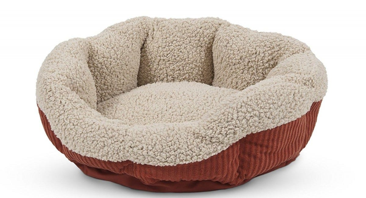 Cats Love Curling Up In A Warm Cozy Spot So The Aspen Pet Self Warming Bed Is Pretty Much Slam Dunk Pick It Can Your Cat Without Electricity
